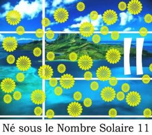 Né sous le Nombre Solaire 11