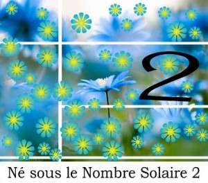 Né sous le Nombre Solaire 2