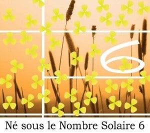 Né sous le Nombre Solaire 6