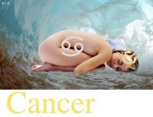 Cancer, Vos Affinités Familiales avec les autres signes