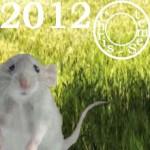Rat, votre année 2012