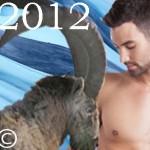 ★ CAPRICORNE ★ Votre Année 2012