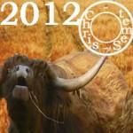 Boeuf ou Buffle, Votre année 2012