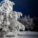 ♑ Horoscope du mois de janvier 2012 ♒