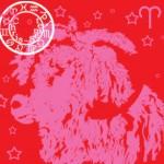 Bélier ✾ Mytho-Astro ou l'origine de votre signe ✾
