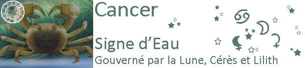 Cancer - 2013