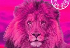 ❁ Horoscope du 20 au 26 mai 2013 | Lion ❁