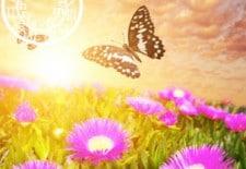 ❤ Votre horoscope amoureux de l'été 2013 ❤