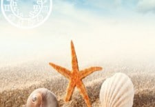 ☀ Votre horoscope des vacances 2013 ☀
