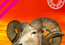 ❀ Horoscope du mois de février 2014 | Bélier ♈