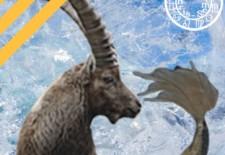 ✵ Horoscope du 9 au 15 janvier 2017 | ♑ Capricorne ✵