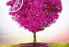 ❀ Votre horoscope amoureux du printemps ❀
