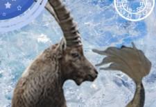 Capricorne : Votre horoscope amoureux de l'hiver 2015