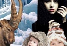 L'année Scolaire 2017 – 2018 de l'enfant Capricorne