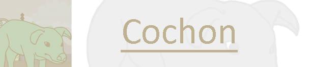 Cochon 2015