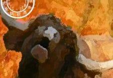 Bœuf ou buffle 牛 | Votre année 2017