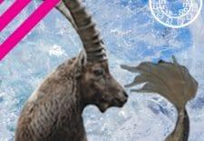 ✮ Horoscope du mois de février 2018 | Capricorne ♑