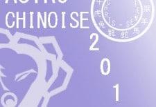 Votre Astro Chinoise 2013