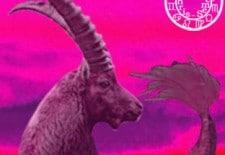 ❁ Horoscope du 15 au 21 avril 2013   Capricorne ❁