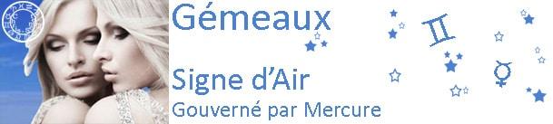Gémeaux - 2013