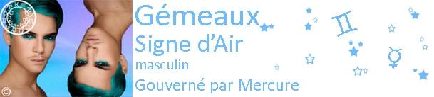 Gémeaux 2013 - 2014