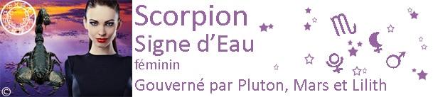 Scorpion 2013 - 2014