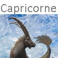 Capricorne Icone