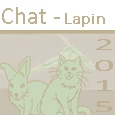 Chat - Lapin Icone