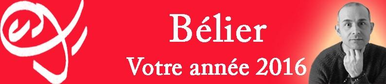 1 Bannière Bélier Signe