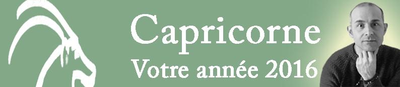 10 Bannière Capricorne signe