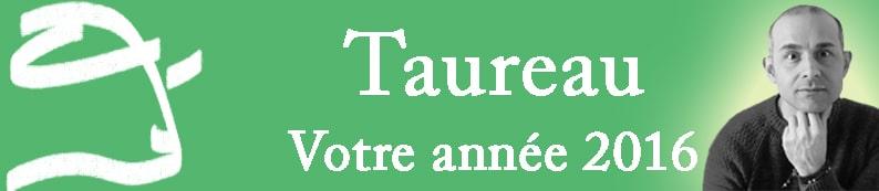2 Bannière Taureau Signe
