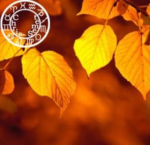 ♥♡ Votre horoscope amoureux de l'automne 2019 ♡♥