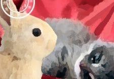 Chat ou Lapin 兔 | Votre année 2017